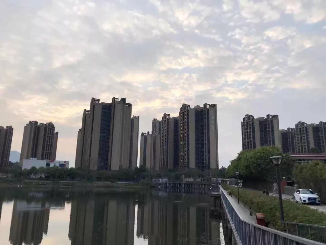 """小区外的""""绝美湖景""""?.jpg"""