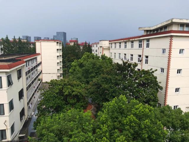 """""""重建是一项有温度民生工程""""朱大叔和上海武川路222弄153户居民的新生活"""